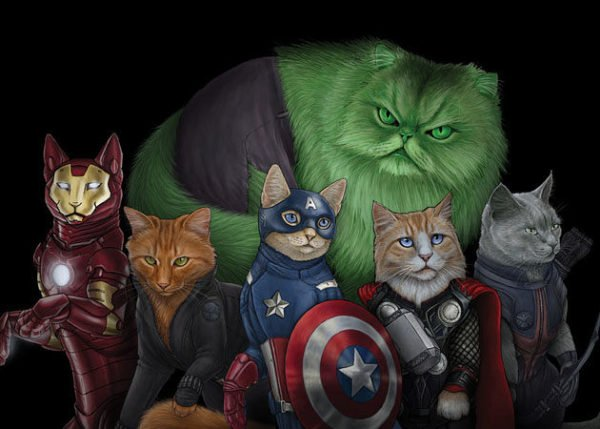 Marvel warrior cats