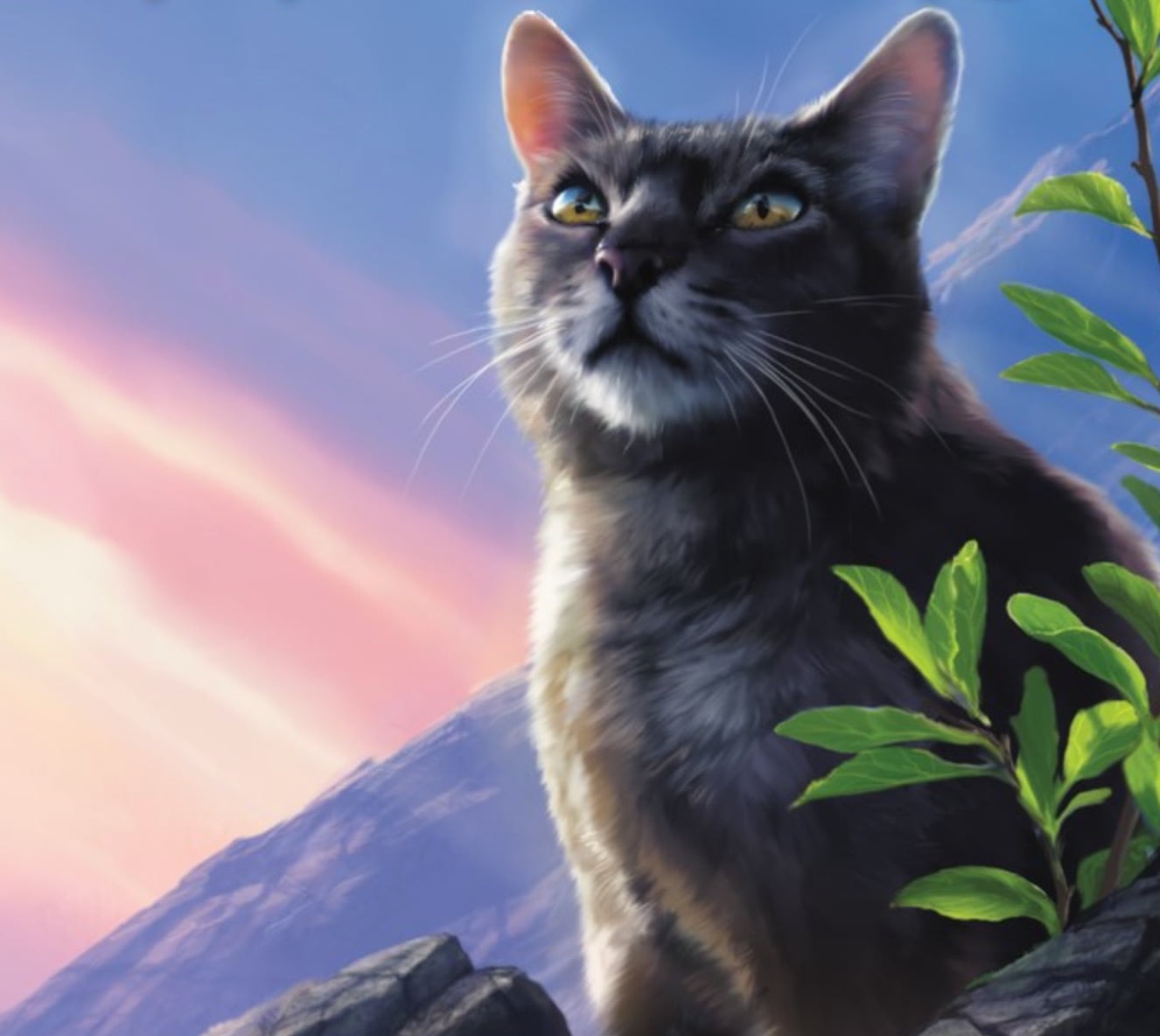 Warriors Erin Hunter Lost Stars: BlogClan
