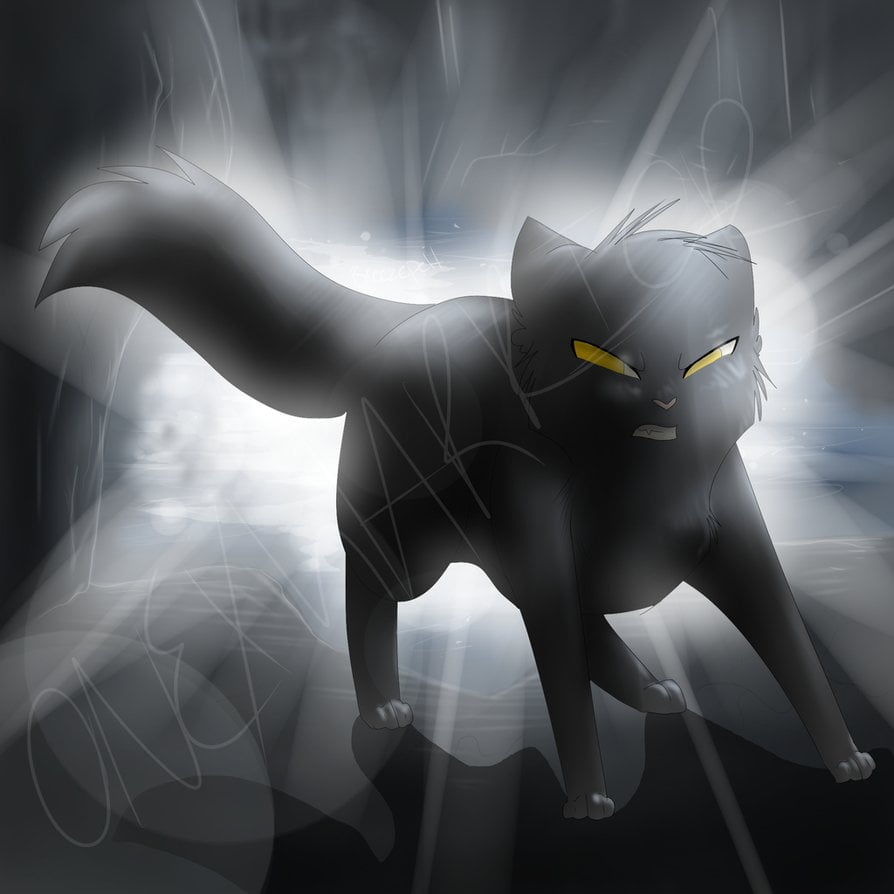 breezepelt_by_onexwarrior-d5yieum.png