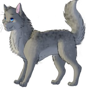 new_ashfur_by_firemoon9-d5co4jc