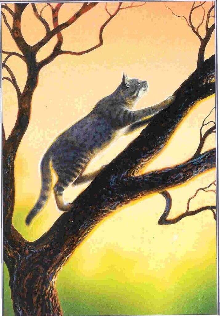 Ashfur-warrior-cats-forever-30356611-715-1024