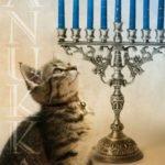 Cadvent - Christmas Eve and Hanukkah!