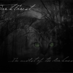 The first battle of The Dark Forrest, part 2, The lost clan and WindClan by Littlepaw