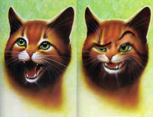 my top ten warrior cats blogclan