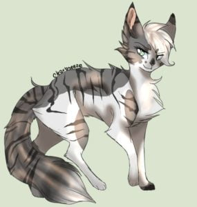 Why Ashfur is NOT the father of Dovewing and Ivypool by Fawnpaw