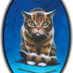 List of Medicine Cat Herbs by Nightpaw