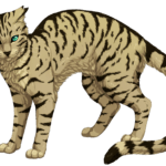 Otternoses top ten favorite, and least favorite warrior cats! by Otternose