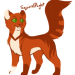 Which tom would have been the best mate for Squirrelflight by Springbreeze
