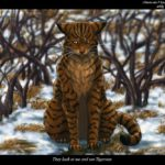 Warrior Cats Thoughts by Bluepaw