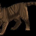 Defending Tigerheart (Spoilers!) by Butterflyflower
