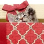 BlogClan Holiday Gift Exchange!