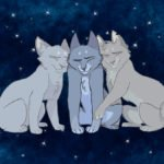 Half-Clan Cats: Good or Evil? Analyzing Stonefur and Mistystar's Characters by Cheetahpaw