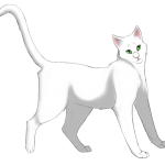 Warrior cats who should have there own super edition by Brackenstorm