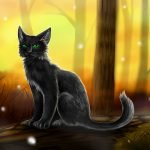 Hollyleaf, and Nothing Else by Sorrelpaw
