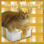 Happy Birthday, Jasminebreeze!