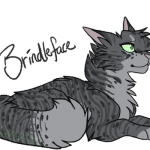 My top favorite cats from The Prophecy Begins by Cloudymoon