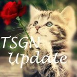 TSGN Update & Info