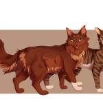 Top Five Most Supportive Littermates in Warriors by Pineblossom