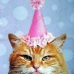 Happy Birthday, Mapledrift!