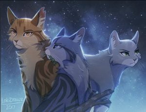 Reasons Why I think Dovewing is perfect to be part of the Three & not Hollyleaf by Blossomfire15