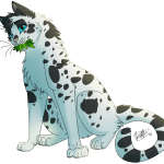 The Top 5 Underrated Warrior Cats by Feathermoon