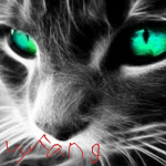 Ivyfang